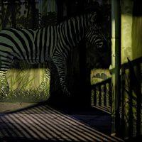 "Elke Seeger – ""Capturing Nature – Fotografische Erkundungen"" / Zoo_2016/17 Tierpark Berlin, 23.01.2017, Eingang"